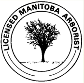 Kildonan Tree Service is proudly a Licensed Manitoba Arborist. Learn more about our services on our website.
