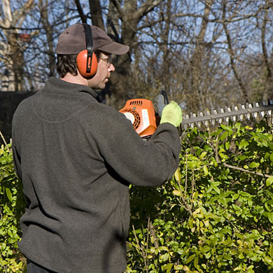 Kildonan Tree Service experts will provide you with affordable tree service in Winnipeg.
