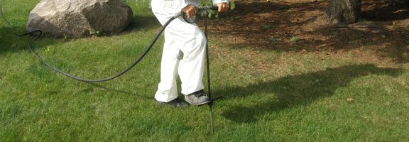 Fertilization is part of the tree service in Winnipeg offered by Kildonan Tree Service.