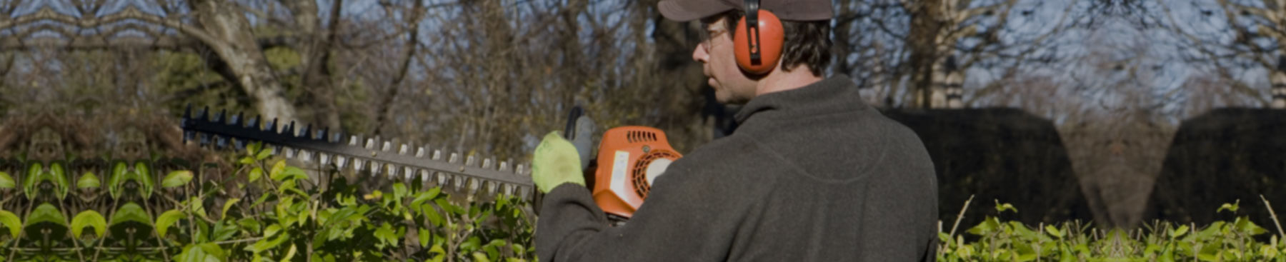Kildonan Tree Service employs certified experts for tree service in Winnipeg.